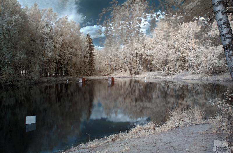 Снежная заводь