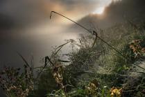 Утро туманной реки