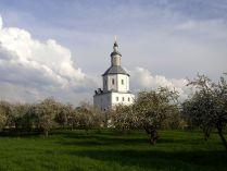 Май. Свенский монастырь.