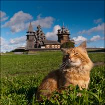 Кижский кот