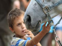 Есть в лошади какая то загадка...