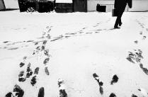 Бутово/Зима