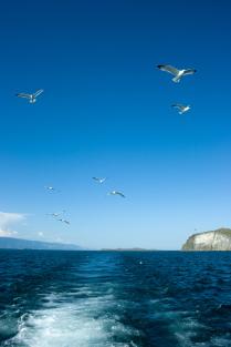 На Малом Море
