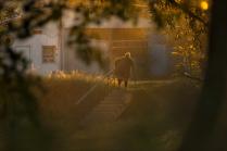 Осень в Минусинске