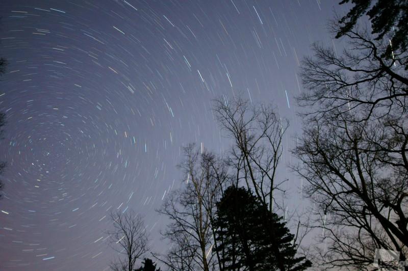 Звёздное небо тайги