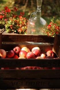 Осень. Яблоки. Самогон.