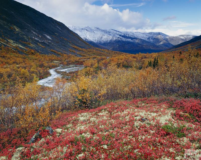 Поздняя  осень в Хибинах