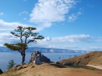 Дерево желаний. Байкал