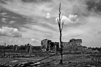 Сталинград под Лениградом