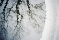 март в пруду.