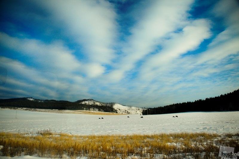По дороге к Байкалу