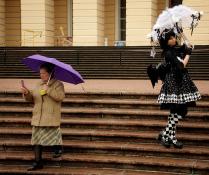 Под зонтами