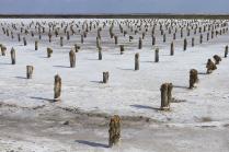 Соляные столбы
