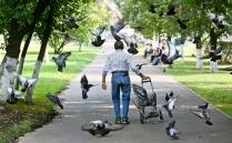 Пенсионер в парке