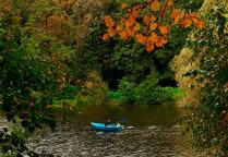 Плывущие в осень