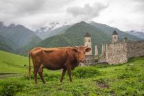 At the mountains of Ingushetia