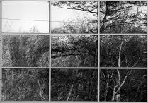 Окно в природу