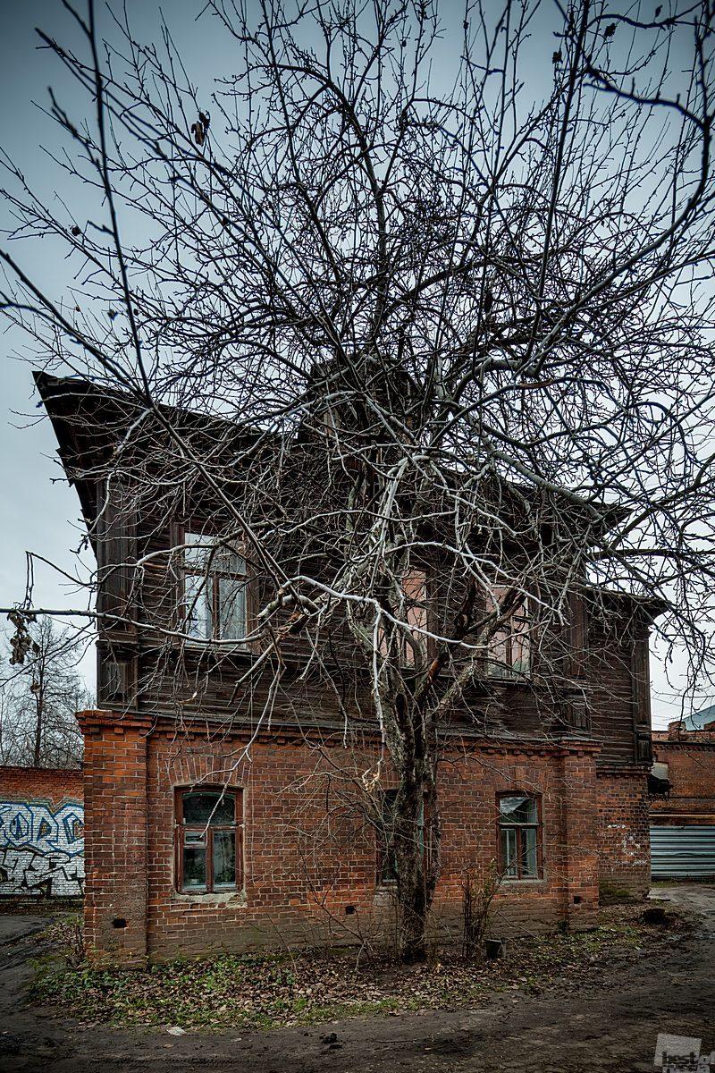 Дом в Холодном переулке