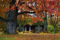 Осень в Михайловском.