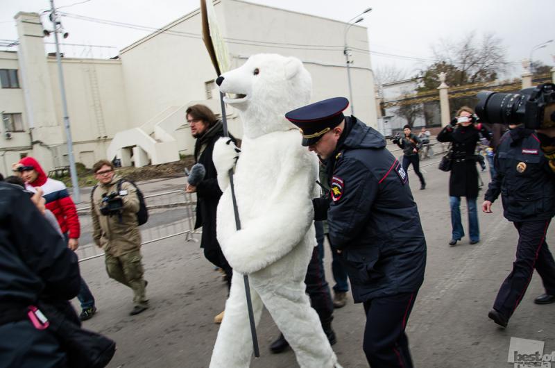 Медведь-провокатор на митинге Гринпис