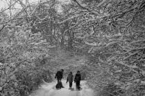 Дорога в зимнюю сказку.