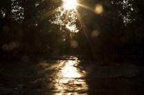 Солнце и дождь