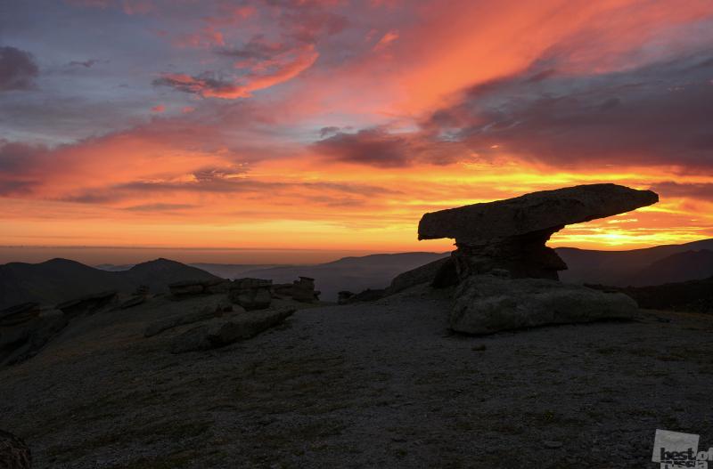Утро на поляне каменных грибов