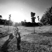 Лето. Солнце. Велосипед.