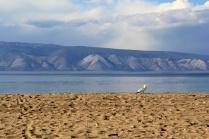 Heart Of Lake Baikal