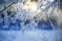 Скованные льдом