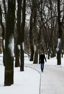 Февраль в Михайловском саду