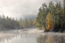 Утро в тумане