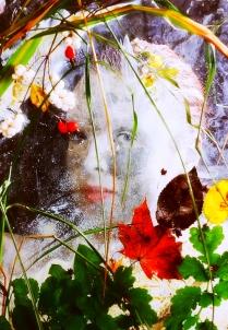 """""""Осень с голубыми глазами"""""""