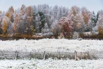 Эстетика первого снега.
