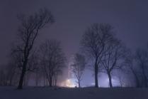 Рождественский туман