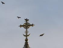 Вокруг креста