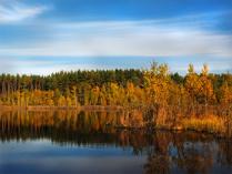 Подмосковная осень