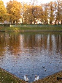 Осенняя гармония