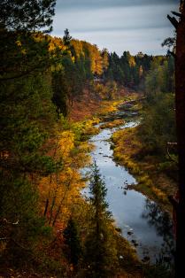 Осень на берегах известняковой реки