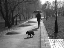 Женщина с собакой