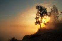 Золотой рассвет