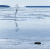 Весна на Рыбинском водохранилище