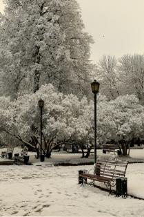 Неожиданный Апрельский снег