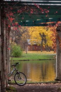 Осенняя картинка