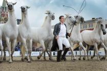 Лошади на Красной площади