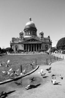 Собор и голуби