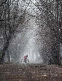 Aprils Snow