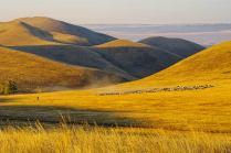 Утро в Долгих горах.