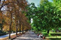 Летняя осень