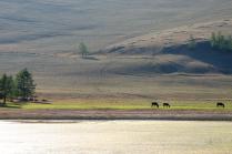 Окрестности села Байкальского